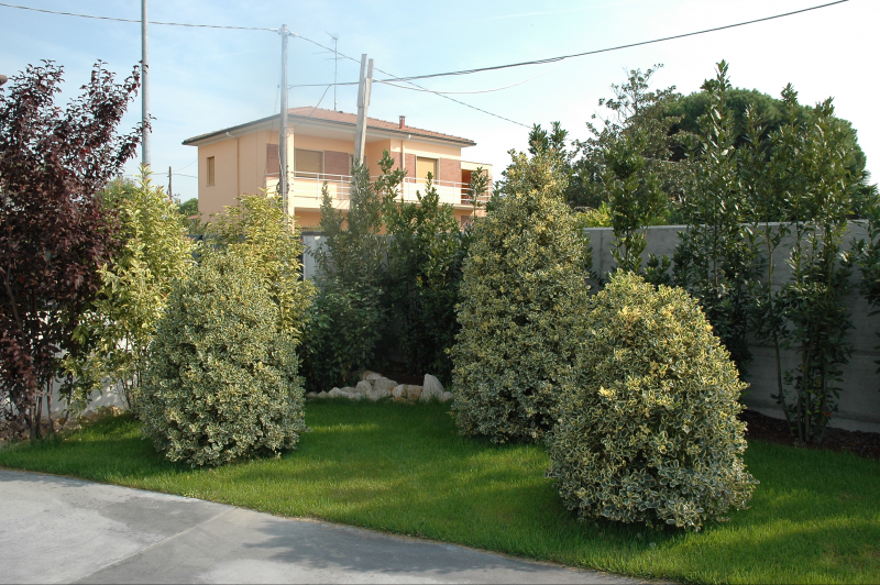 Immagini Di Giardini Moderni : Giardini moderni